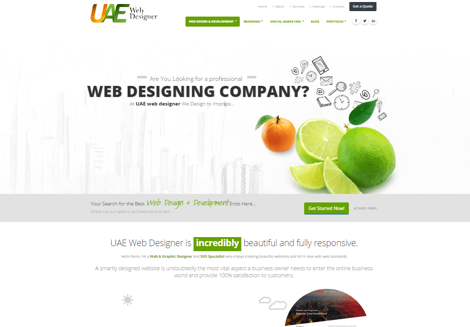 UAE Web Designer SEO work 4