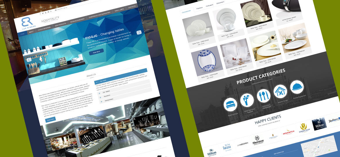 UAE Web Designer Website design 9